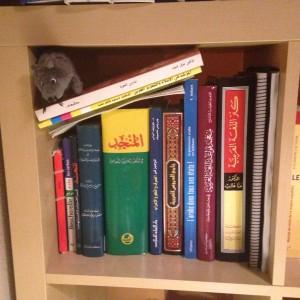 Biblioteca de gramática árabe